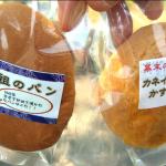 静岡・韮山反射炉とパン祖・江川英龍さんの堅パン。