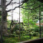 京都・大原「宝泉院」