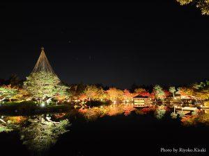 東京・立川「国営昭和記念公園」秋の夜散歩2020